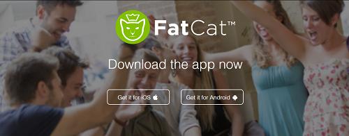 fatcat3